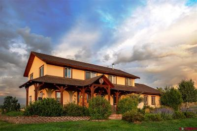 Pagosa Springs Single Family Home For Sale: 116 Echo Creek Court