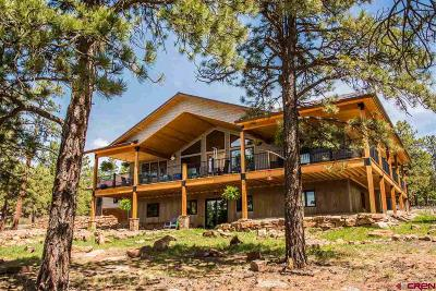 Pagosa Springs CO Single Family Home For Sale: $1,475,000