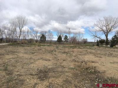 Montrose Residential Lots & Land For Sale: 3508 Chestnut Drive