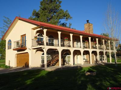 Pagosa Springs Single Family Home For Sale: 163 Hawk Place