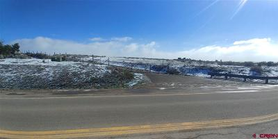 Dolores CO Residential Lots & Land For Sale: $475,000