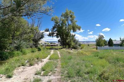 Montrose Residential Lots & Land For Sale: 6650 Road