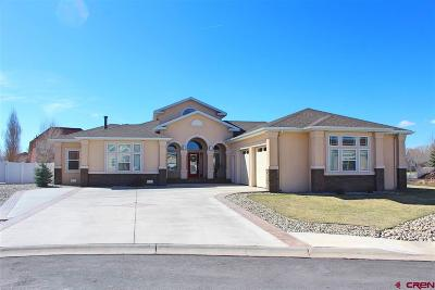 Alamosa Single Family Home For Sale: 1148 Riverbend Court