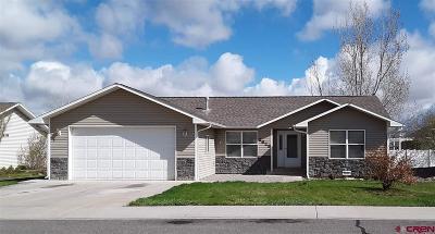 Montrose Single Family Home For Sale: 2825 Glen Oak Drive