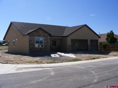 Montrose Single Family Home For Sale: 1525 Teak Avenue