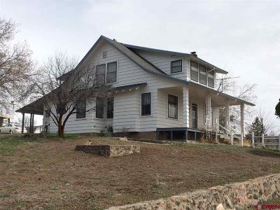 Cedaredge Single Family Home For Sale: 152 NW Shady Oak Avenue