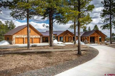 Pagosa Springs CO Single Family Home For Sale: $1,195,000