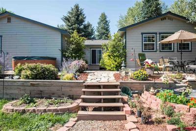 La Plata County Single Family Home For Sale: 84 Navajo Lane