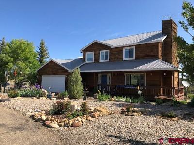 Mancos Single Family Home For Sale: 35505 Road H.5