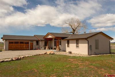 La Plata County Single Family Home For Sale: 565 Prospect Drive