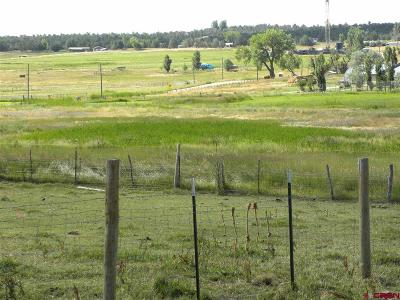 Bayfield Residential Lots & Land UC/Contingent/Call LB: Cr 510