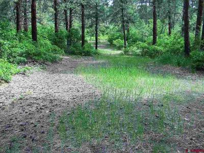 Bayfield Residential Lots & Land For Sale: 189 Squirrel Drive