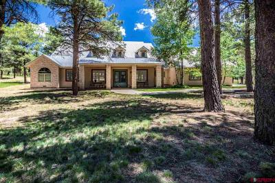 Pagosa Springs CO Single Family Home For Sale: $889,900