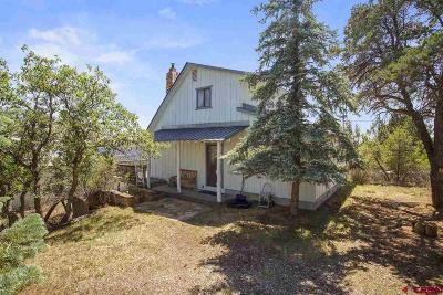 La Plata County Single Family Home For Sale: 201 Alpine Drive