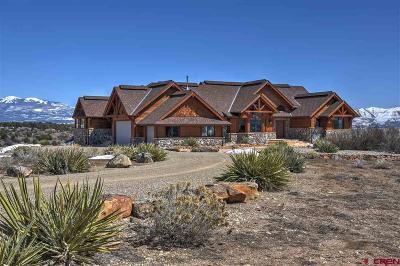 Mancos Farm For Sale: 36401 Highway 160