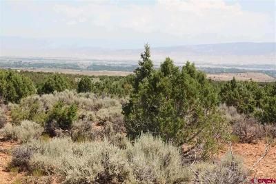Montrose Residential Lots & Land For Sale: 18858 Rocky Road Trail