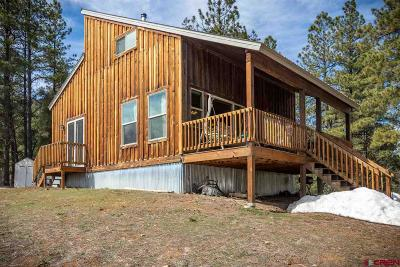 Pagosa Springs Single Family Home For Sale: 347 Carol's Curves Road