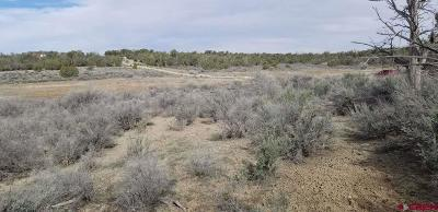 Dolores Residential Lots & Land For Sale: 24.4 Road