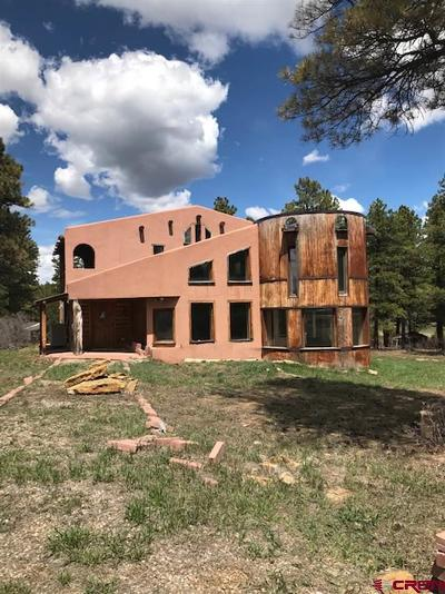 Mancos Single Family Home For Sale: 35677 Hwy 184