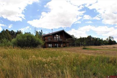 La Plata County Single Family Home For Sale: 120 Sundance Circle