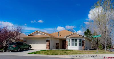 Montrose Single Family Home For Sale: 1135 Fivemile Creek Avenue