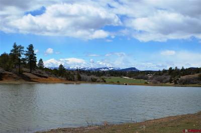La Plata County Farm For Sale: 3360 County Road 228