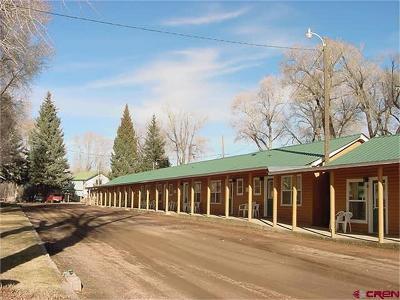 Gunnison County Condo/Townhouse For Sale: 1314 W Tomichi Avenue #2
