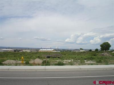 Montrose Residential Lots & Land For Sale: 6300 Road