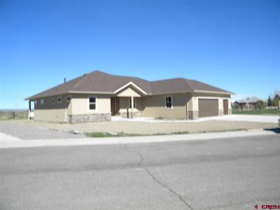 Montrose Single Family Home NEW: 2208 Majestic Circle