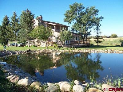 La Plata County Single Family Home UC/Contingent/Call LB: 1013 Cr 300