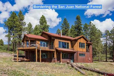 La Plata County Single Family Home For Sale: 115 Saddle Trail