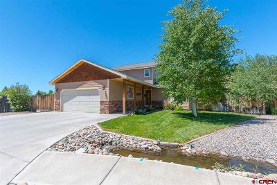 Gunnison Single Family Home For Sale: 809 Sunny Slope Drive