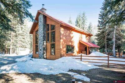La Plata County Single Family Home For Sale: 395 Decker Drive