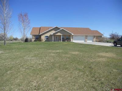 Dolores Single Family Home For Sale: 27221 Road M.7