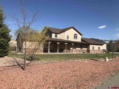 Montrose Single Family Home NEW: 20900 Trophy Road