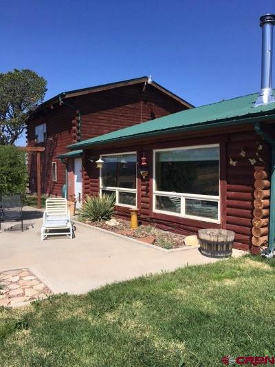 Mancos Single Family Home For Sale: 38450 Road J.5