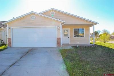Delta County Single Family Home UC/Contingent/Call LB: 601 Hawk Court
