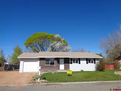 Montrose Single Family Home UC/Contingent/Call LB: 347 6403 Road