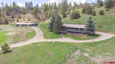 La Plata County Single Family Home For Sale: 2415 Cr 141