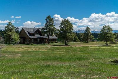 Pagosa Springs Single Family Home For Sale: 141 Northview Court
