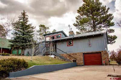 Pagosa Springs Single Family Home For Sale: 500 Caddy Circle