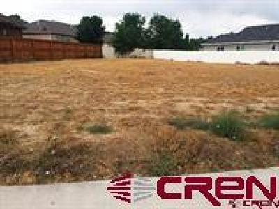 Delta Residential Lots & Land For Sale: 1746 Black Bear Street
