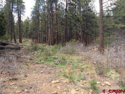 Bayfield CO Residential Lots & Land NEW: $19,000