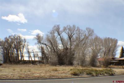 West Gunnison Residential Lots & Land For Sale: 500 S 12th Street
