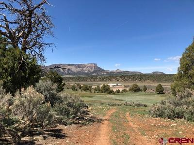 Mancos Residential Lots & Land For Sale: 38025 Highway 160