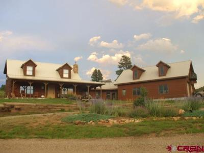 Pagosa Springs Single Family Home For Sale: 61 County Road 700