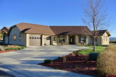 Montrose Single Family Home For Sale: 2256 Majestic Circle