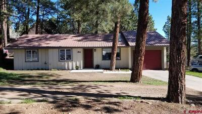 Durango Single Family Home UC/Contingent/Call LB: 94 Trail Wood Drive
