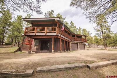 Pagosa Springs Single Family Home For Sale: 7 N Dawning Court