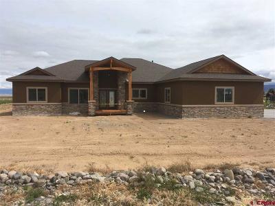 Montrose Single Family Home For Sale: 61551 Lynnellen Way